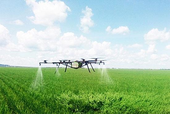 Український агростартап Kray Technologies переміг у Польщі фото, ілюстрація