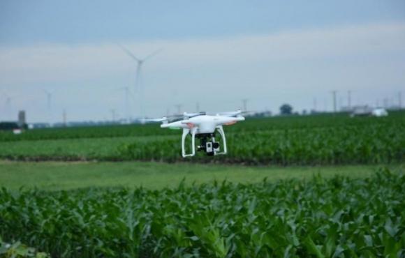 Селекционеры научились использовать дроны в исследованиях фото, иллюстрация