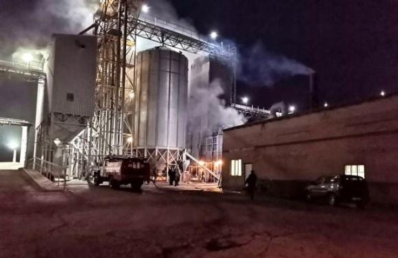 Вогонь на Полтавщині «злизав» 60 тонн насіння соняшнику фото, ілюстрація
