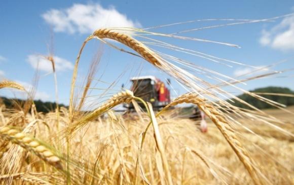Аграрний союз України виступає категорично проти введення мита на дизпаливо та скраплений газ фото, ілюстрація