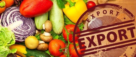 За півроку Україна продала ЄС овочів на 24 млн доларів фото, ілюстрація