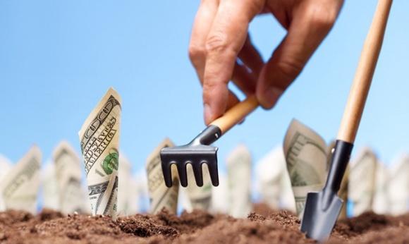 В Украине запустили «платформу» с деталями получения бюджетной поддержки агросектора фото, иллюстрация