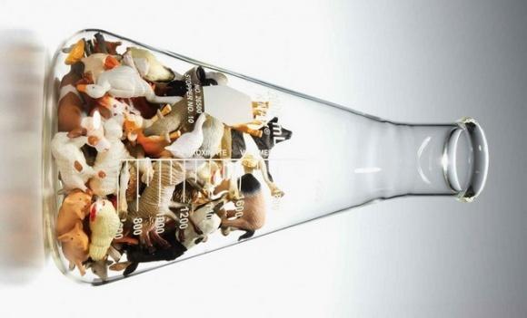 Топ-10 деликатесов будущего: мясо из овса и белок из мух фото, иллюстрация