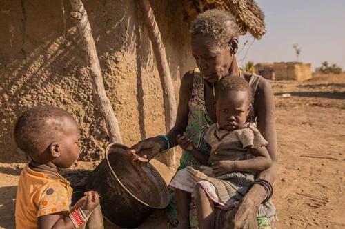 Від гострого дефіциту продовольства потерпає понад 100 мільйонів людей у всьому світі, – ФАО фото, ілюстрація