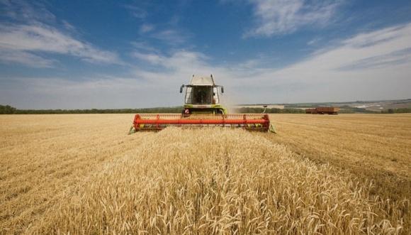 Аграрії змушені через посуху завчасно починати збір озимих фото, ілюстрація