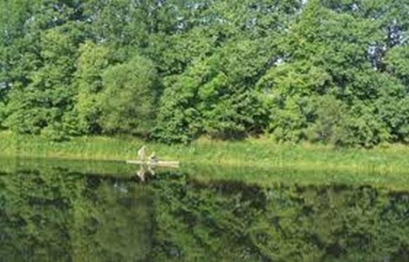 Міністерство довкілля Німеччини профінансує на Сумщині три екопроєкти фото, ілюстрація