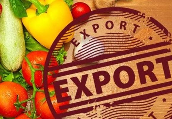 Украине не стоит отказываться от экспорта продуктов питания фото, иллюстрация
