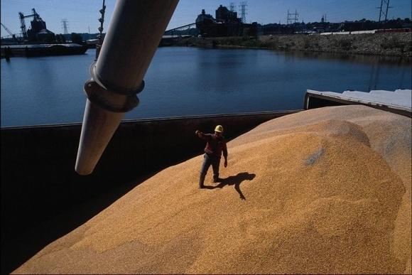 Экспорт зерна принес Украине в 2016 году более $6 млрд фото, иллюстрация