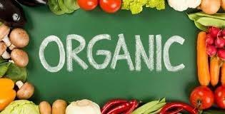 Топ-10 найпопулярніших українських органічних продуктів на зовнішньому ринку фото, ілюстрація