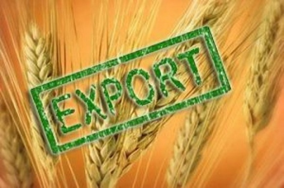 Визначені в меморандумі обсяги експорту пшениці в форматі «8+8» переглядатись не будуть фото, ілюстрація