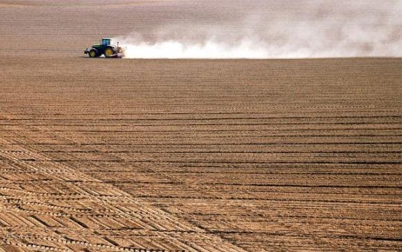 Земельна реформа спричинить зростання ВВП на 1% щороку, — Лещенко фото, ілюстрація