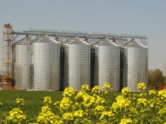 В ближайшие 10 лет в строительство зернохранилищ аграрии инвестируют минимум $12 млрд фото, иллюстрация