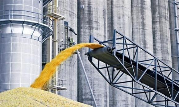 Кабмин принял решение, которое поможет экспортерам зерна сэкономить 15% фото, иллюстрация