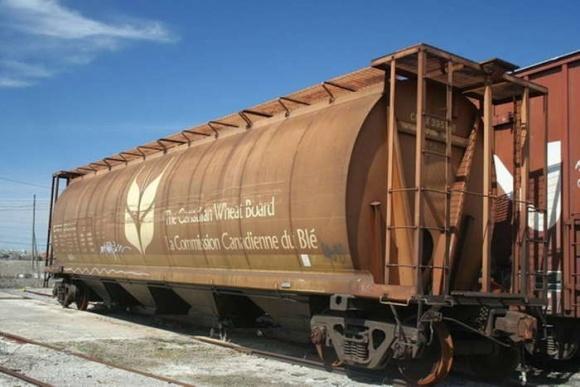 Китай купує все більше української пшениці фото, ілюстрація