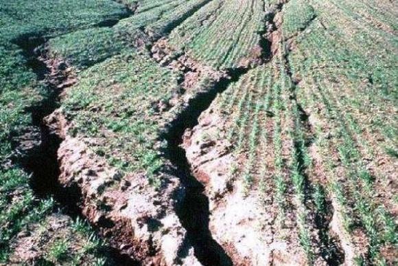 Украинские аграрии теряют треть доходов из-за эрозии почв фото, иллюстрация