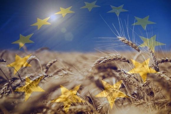 Успешный выход на рынки ЕС украинских экспортеров возможен при ориентации на стандарты Германии фото, иллюстрация