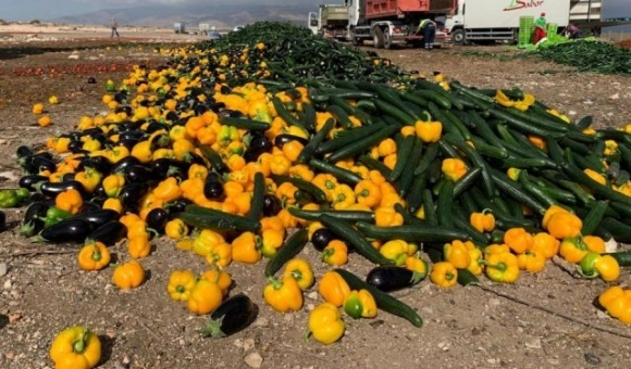 Іспанські фермери готові знищувати плодоовочеву продукцію через низькі ціни фото, ілюстрація