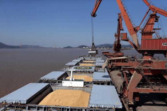 Украина продолжает сокращать экспорт зерна фото, иллюстрация