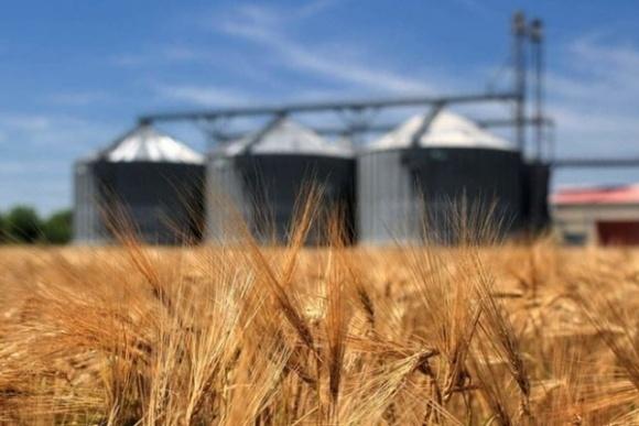 В случае превышения лимита экспорт пшеницы будет запрещен, — Высоцкий фото, иллюстрация