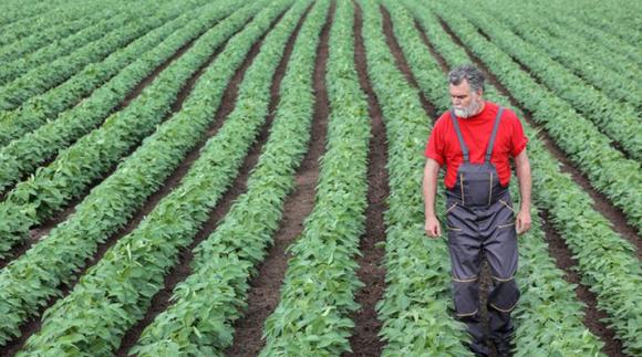 Сельхозпроизводителей поддержат посредством программ школьного питания фото, иллюстрация