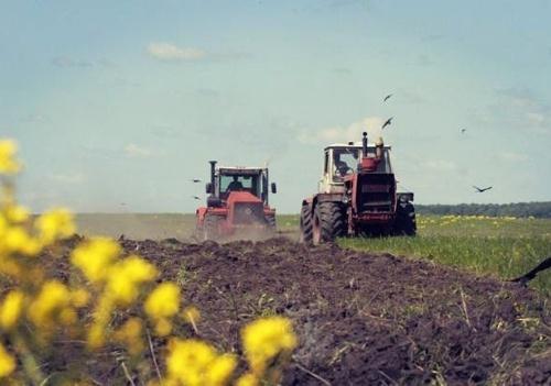Аграриям черниговской области яровыми осталось засеять 5% прогнозируемых площадей фото, иллюстрация