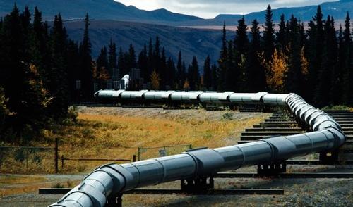 Білорусь зняла обмеження на постачання нафтопродуктів в Україну фото, ілюстрація