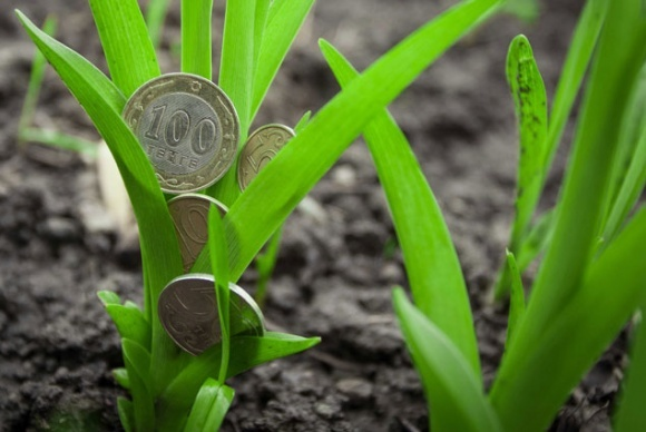 """Де малим і середнім агрокомпаніям знайти """"правильні"""" гроші? — IFC фото, ілюстрація"""