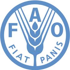 ФАО ожидает падения мирового производства зерновых фото, иллюстрация