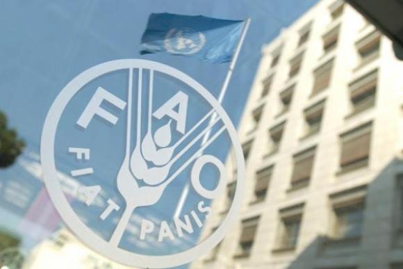 FAO поможет 20 группам агропроизводителей в зоне АТО фото, иллюстрация