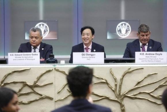 ФАО поклала офіційний початок Міжнародного року охорони здоров'я рослин 2020 фото, ілюстрація