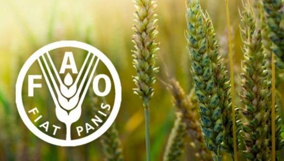 FAO проводит всемирную сельскохозяйственную перепись фото, иллюстрация