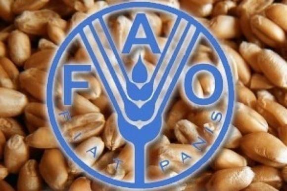 Индекс продовольственных цен FАО в октябре фото, иллюстрация