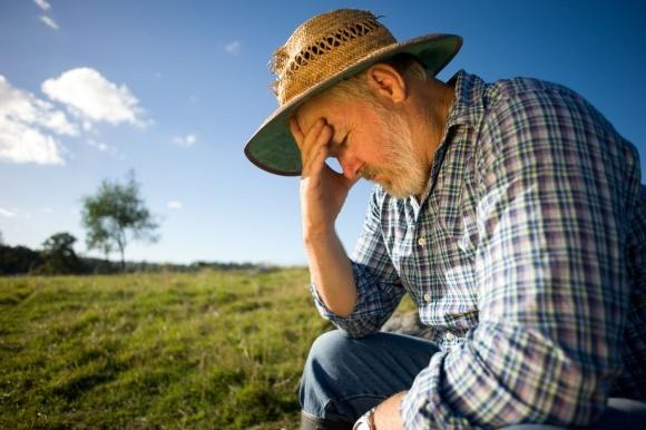 Ставку податку для сільгоспвиробників хочуть збільшити фото, ілюстрація