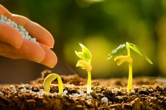 Аграрии Сумской области обеспечены удобрениями на 27% фото, иллюстрация