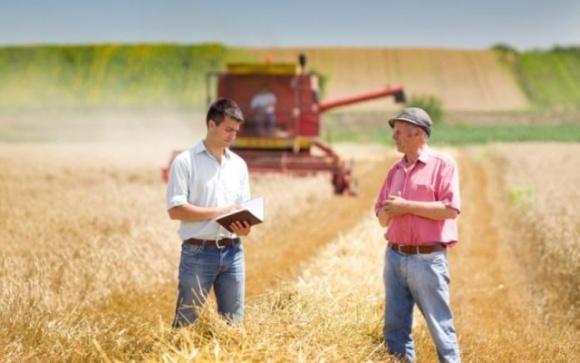 """""""Ми залишимося без роботи"""": фермери сходу і заходу країни поділилися думками щодо відкриття ринку землі фото, ілюстрація"""