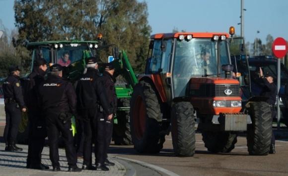 Фермеры заблокировали дороги в Испании через низкие цены на овощи и фрукты фото, иллюстрация