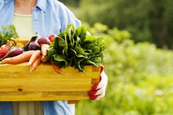На Франковщине фермер из Германии основал открытую органическую ферму фото, иллюстрация