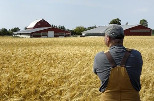 У США посилюють підтримку фермерів фото, ілюстрація