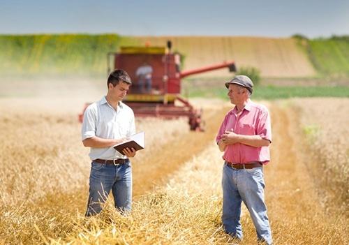 Банки готовят специальные кредиты для фермеров фото, иллюстрация