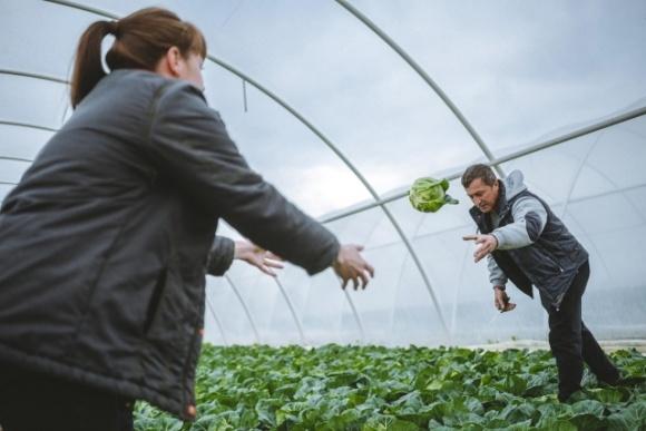 В Раде поддержали законопроект, который защитит семейные фермерские хозяйства фото, иллюстрация