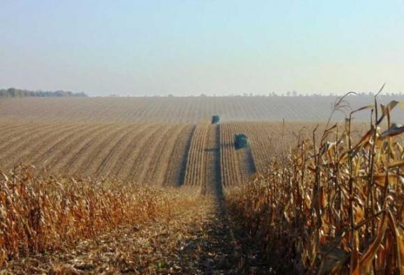 Фермеры рассказали, как бывший глава Аграрного фонда Иван Барышев их в кабалу вгонял фото, иллюстрация