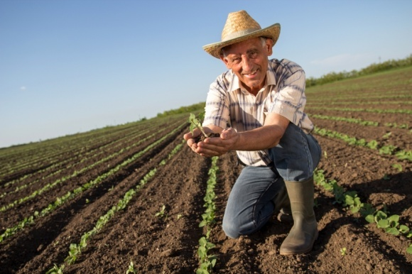 У фермеров появился свой профессиональный праздник фото, иллюстрация