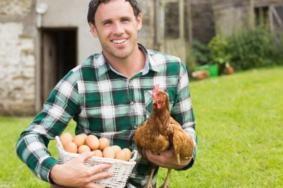 """Т.Кутовий ініціює програму """"Хочу бути фермером!"""" фото, ілюстрація"""