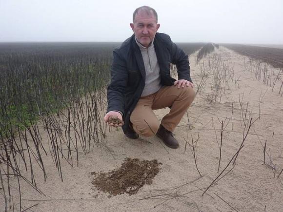 На Херсонщині у фермера пустеля забрала врожай фото, ілюстрація