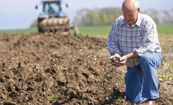 В Ржищевской ОТГ фермер из «Расавки» рискует потерять земли через теневые схемы фото, иллюстрация