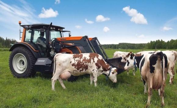 Правительство выделило почти 3 млрд гривен фермерским хозяйствам фото, иллюстрация