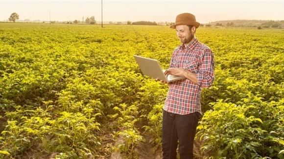 Заявки от фермеров на получение кредитов через Укргосфонда составили почти 60 млн грн фото, иллюстрация