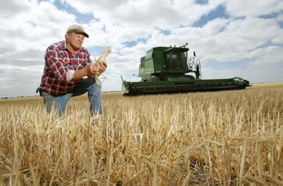 В Україні зростає кількість фермерських господарств фото, ілюстрація
