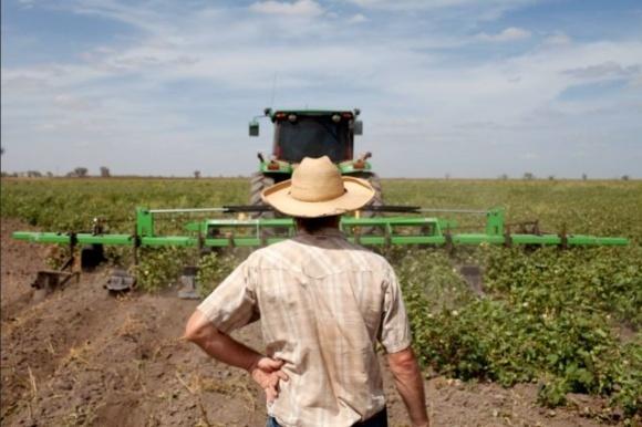 Украинские фермеры могут массово остановить работу фото, иллюстрация