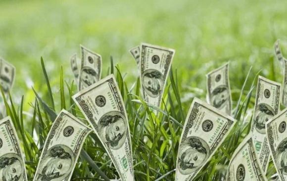 Арендная ставка земли составляет 13% - М. Мартынюк фото, иллюстрация